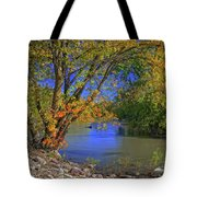 Autumn On The North Raccoon Tote Bag