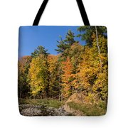 Autumn On The Riverbank - The Changing Forest Tote Bag