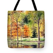 Autumn Oranges Tote Bag