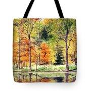 Autumn Oranges Tote Bag