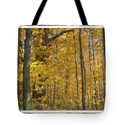 Autumn Out My Window Tote Bag