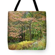 Autumn Paints A Dogwood And Ferns Tote Bag