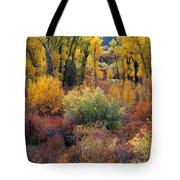 Autumn Panoramic Tote Bag