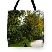 Autumn Park  Tote Bag