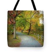 Autumn Path II Tote Bag