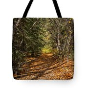 Autumn Path In Spearfish Canyon Tote Bag