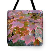 Autumn Pink 2 Tote Bag