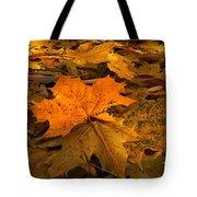 Autumn Quilt Tote Bag