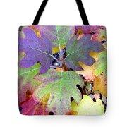 Autumn Rainbows Tote Bag