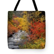 Autumn Rapids Tote Bag