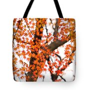 Autumn Red Leaves On A Tree   Tote Bag