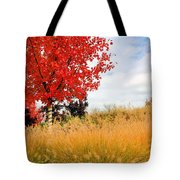 Autumn Red Maple Tote Bag