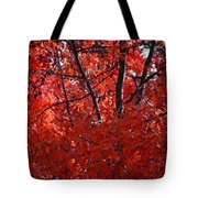 Autumn Red Trees 2015 Tote Bag