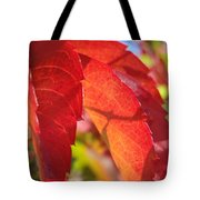Autumn Reds Tote Bag
