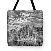 Autumn Reflection 2 Bw Tote Bag