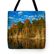 Autumn Reflection II Tote Bag