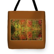 Autumn Reflections In A Window Tote Bag