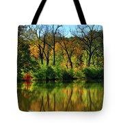 Autumn Reflections On Salt Creek IIi Tote Bag
