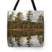Autumn Reflector Tote Bag