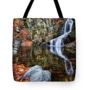Autumn Refletions Tote Bag