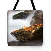 Autumn Resting Place Tote Bag