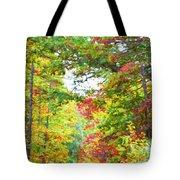 Autumn Road - Digital Paint Tote Bag