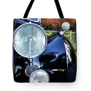 Autumn Rolls Tote Bag