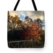 Autumn Rust Tote Bag