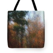Autumn Scene 10-23-09 Tote Bag