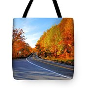Autumn Scene With Road In Forest 2 Tote Bag
