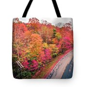 Autumn Season And Color Changing Leaves Season Tote Bag
