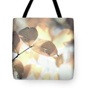Autumn Season Leaves On A Tree In Sun Light Tote Bag