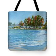 Autumn Shores - Jordan Lake Tote Bag