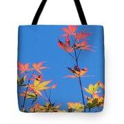 Autumn Skies Tote Bag