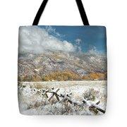 Autumn Snowfall In Aspen Tote Bag