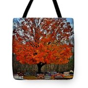 Autumn Somnolence  Tote Bag