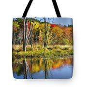 Autumn Splendor - Bolton Flats Tote Bag