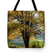 Autumn Splendour Tote Bag