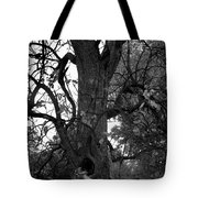 Autumn Spook In Black And White Tote Bag