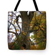 Autumn Spook Tote Bag