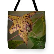Autumn Spotted Tote Bag