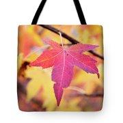 Autumn Still Tote Bag