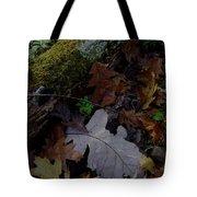 Autumn Still-life Tote Bag