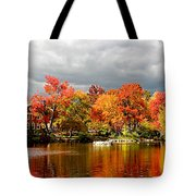 Autumn Storm Coming Tote Bag