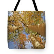 Autumn Straight Up Tote Bag