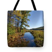 Autumn Stream At Justus Lake Tote Bag by Lon Dittrick