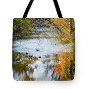 Autumn Stream Reflections Tote Bag