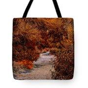 Autumn Stroll No23 Tote Bag
