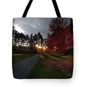 Autumn Sunset, Shawnigan Lake Tote Bag