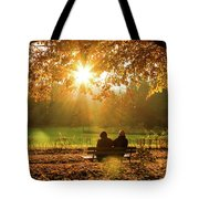 Autumn Sunshine In The Lichtentaler Allee. Baden-baden. Germany. Tote Bag